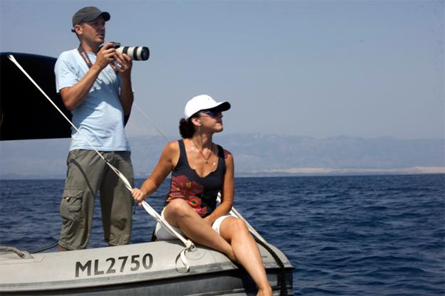 Полевое исследование дельфинов Адриатики
